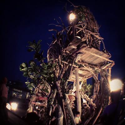 olloclip + instagram / treetower