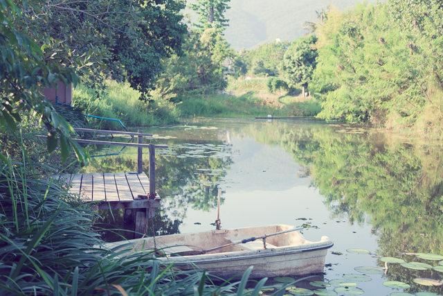モネの絵画のような池