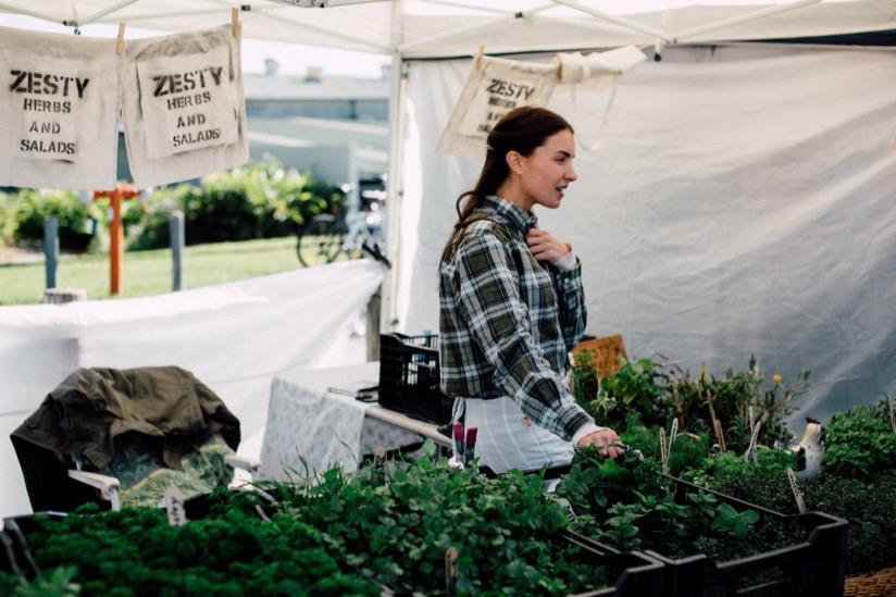 The Gap Farmars Market