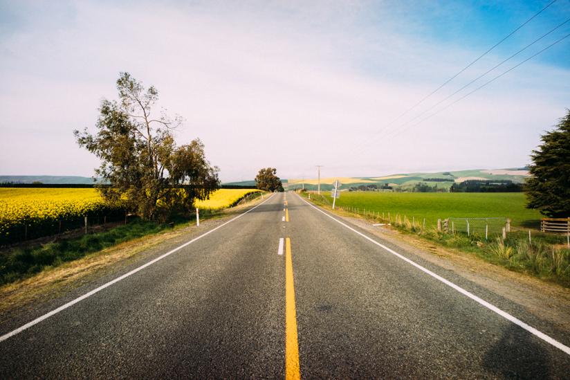 ニュージーランドのドライブはどこも景色が最高