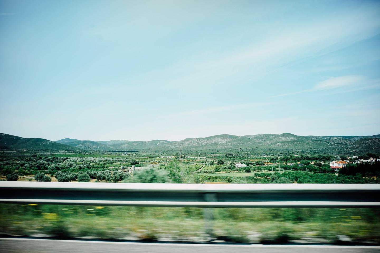 今回の道中よく見た畑やオレンジの木がたくさん並ぶ光景